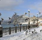 Сезонное жилье в Феодосии